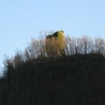 Torre di Guardia di Lame (Parchiule)