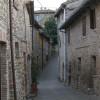 Via principale di Cavoleto
